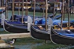 Гондолы на пристани в Венеции Стоковое Изображение RF