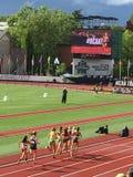 Гонка дальнего расстояния чемпионатов легкой атлетики NCAA стоковые фотографии rf