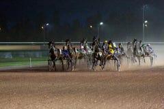 Гонка лошадей на ненастном hippodrome