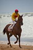 гонка лошади sanlucar Испания barrameda Стоковые Изображения RF