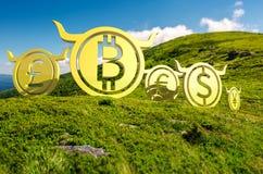 Гонка монетки валюты к верхней части стоковая фотография rf