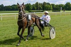 гонка лошадей лошади проводки округляя поворот 3 Стоковое Фото