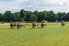гонка лошадей лошади проводки округляя поворот 3 Стоковая Фотография