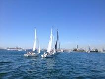 Гонка парусника яхт-клуба Лонг-Бич стоковое изображение rf