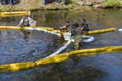 гонка forestville утки Стоковые Фото