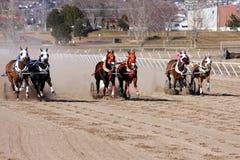 Гонки колесницы Стоковые Фото