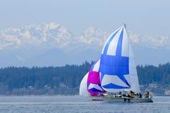 Гонки парусника на звуке Puget, Сиэтл, штате Вашингтоне Стоковое Изображение RF