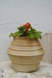Гончарня Брайна с цветками в Mykonos, Греции стоковое фото rf