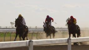 Гонщики лошади и их лошади в замедленном движении акции видеоматериалы