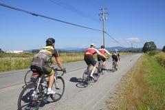 Гонщики долины GranFondo Fraser задействуя Стоковое фото RF