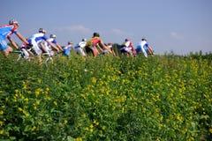 гонщики цикла Стоковая Фотография RF