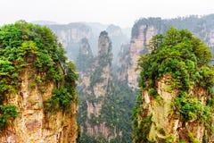 Гора аллилуйя воплощения и другие лесистые утесы, Китай Стоковое Изображение