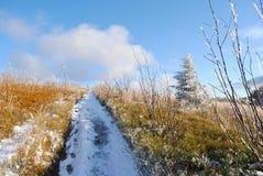 гора ландшафта осени красивейшая Стоковые Фотографии RF