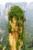 Гора аллилуйя воплощения среди древесных зеленей и утесов Стоковое фото RF