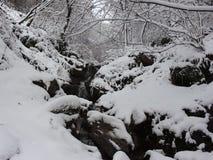 Гора Болгария Belasitsa имеет упаденные снег и проточную воду от высокого водопада акции видеоматериалы