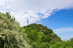 Гора Будапешт Венгрия Gellert Стоковое Изображение