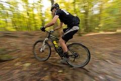 Гора велосипед offroad сквозной лес Стоковая Фотография