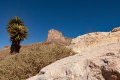 Гора ВЕСА Стоковые Изображения