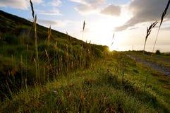 Гора в Ирландии Стоковое Изображение