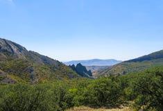 Гора в пуще Стоковое фото RF