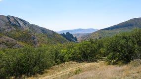 Гора в пуще Стоковое Изображение RF