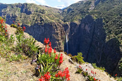 Гора в Эфиопии. Стоковая Фотография RF
