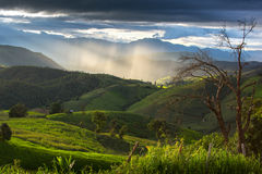 Гора в Mai Chaing, Таиланд Стоковые Фотографии RF