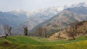 Гора Гималаев в Индии стоковая фотография