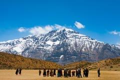 Гора Гималаев пилигримов группы буддийская стоковое фото rf