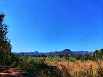 Гора дерева небесно-голубая стоковая фотография rf
