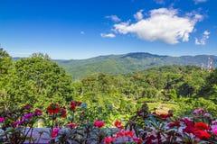 Гора леса цветника и голубое небо Стоковое Фото