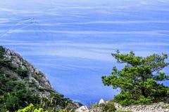 Гора, лес и море Стоковая Фотография