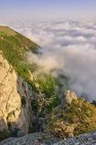 Гора, лес и облака стоковое фото