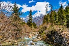 Гора заводи и снега Стоковое Фото
