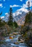 Гора заводи и снега Стоковые Фото