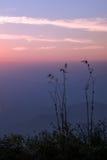 Гора захода солнца вечера одичалая - изображение запаса Стоковое Изображение