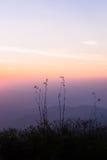 Гора захода солнца вечера одичалая - изображение запаса Стоковое фото RF