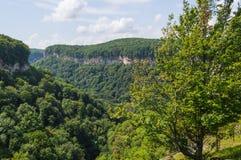 гора зеленого цвета пущи Стоковое Изображение RF