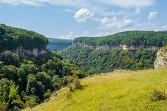 гора зеленого цвета пущи Стоковые Изображения RF