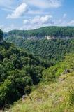 гора зеленого цвета пущи Стоковые Фото