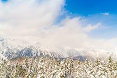 Гора зимы Японии при покрытый снег Стоковая Фотография RF
