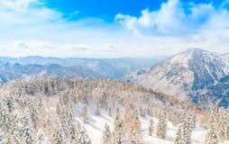 Гора зимы Японии при покрытый снег Стоковое Фото
