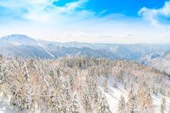 Гора зимы Японии при покрытый снег Стоковые Изображения