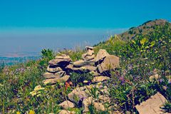 Гора дизайна утеса полевых цветков Стоковая Фотография RF