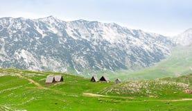 Гора и ландшафт зеленого цвета Черногории Стоковое Изображение