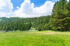 Гора и ландшафт зеленого цвета Черногории Стоковая Фотография