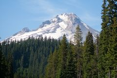 Гора и национальный лес клобука держателя стоковые фотографии rf