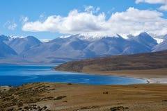 Гора и озеро падуба Стоковая Фотография RF