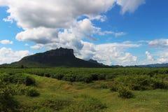 Гора и поле Стоковое Изображение