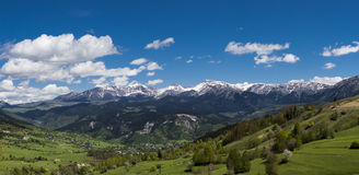 Гора и пуща Стоковые Изображения RF